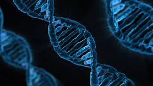image of a DNA strand