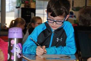 Grades 3-8 state assessment scores released