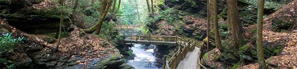 a bridge at Bushkill Falls