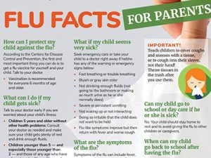 image of flu fact sheet