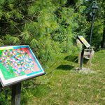 Warwick's first StoryWalk installation features student artwork