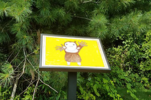 A standing frame displays an illustration of a monkey, part of a StoryWalk exhibit, along a wooded area.