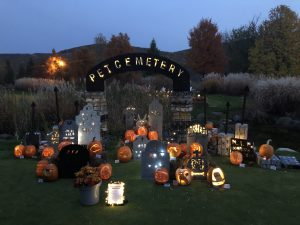 3D art class entry at Crystal Springs Resort Halloween pumpkin carving contest
